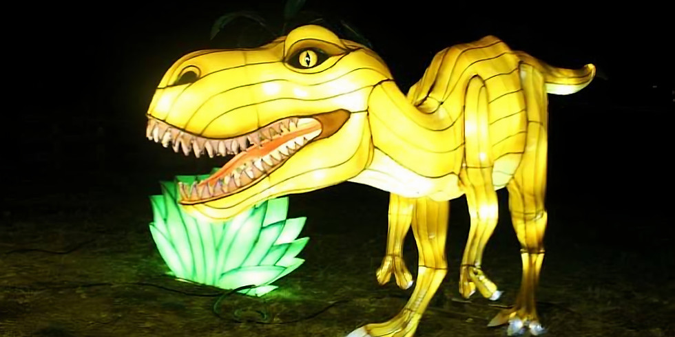 Lantern Light Festival