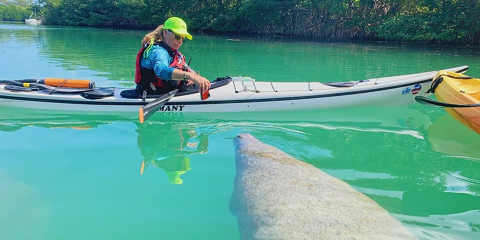 VKOC - Manatee Photo Safari/Kayak & Paddleboard Tour