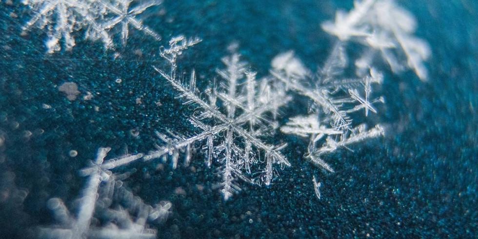 Mini-Me Science: Frosty Flurries