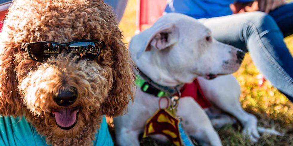 Free Bo's Dog & Pet Fest