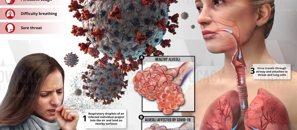 Coronavirus Transmission
