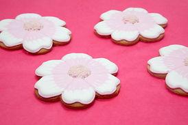 pale pink flowers.jpg