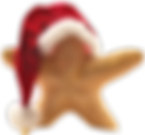christmasonbeach102115_Kopie-removebg-pr