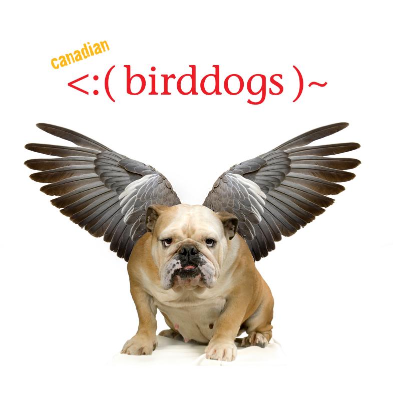 birddogs.png