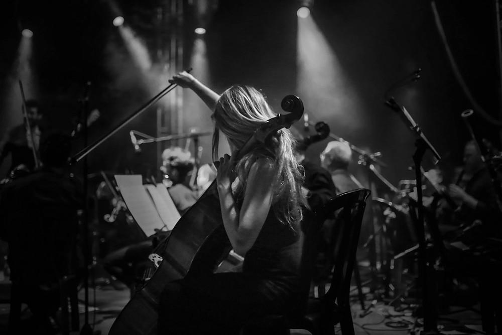 התזמורת הקאמרית במופע מחווה לביטלס. מאת תהילה אור שלו.
