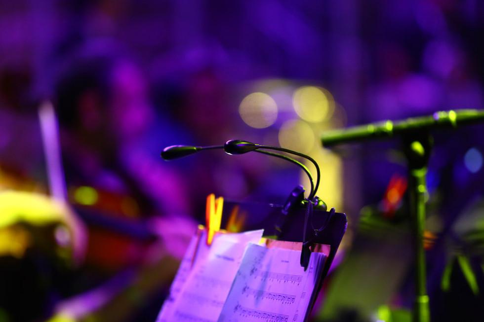 התזמורת הקאמרית