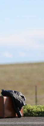 REZA Photography (3).jpg
