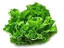 Lettuce_edited.jpg