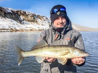 Высокие технологии в рыбалке...