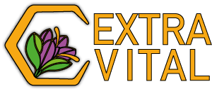 EXTRAVITAL_LOGO.png