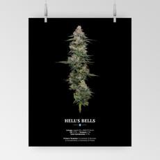 HP Hells Bells_Web Poster.jpg