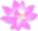 flower-159951_1280.png