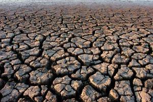 Governo decreta situação de emergência devido à estiagem para 45 municípios da Paraíba