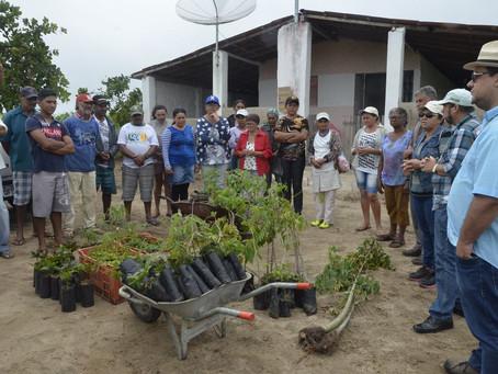 Agricultores ajudam no reflorestamento de reserva legal em assentamento na Paraíba
