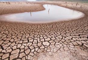 Governo decreta situação de emergência por estiagem  em Araruna e mais 149 municípios