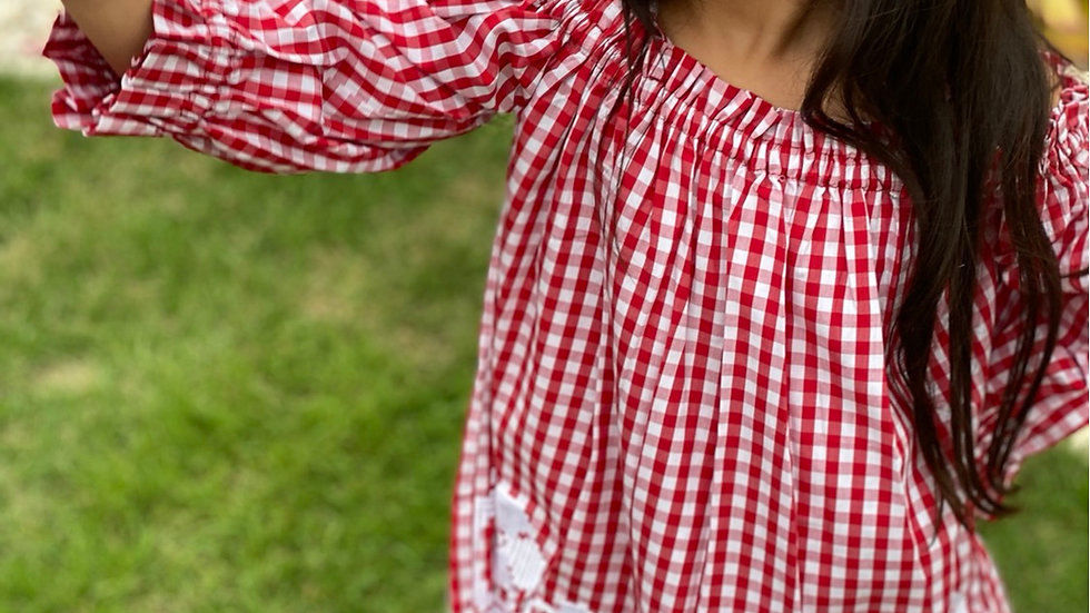 Embroidered Plaid Dress