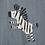 Thumbnail: Zebra Shortall