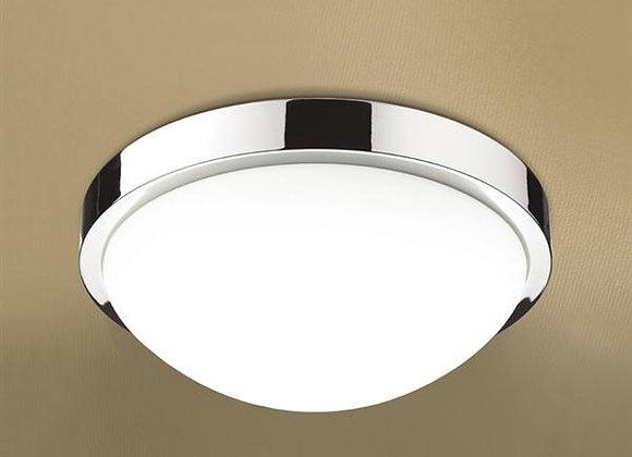 Momentum Circular Ceiling Light
