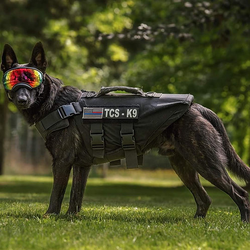 K-9 Ballistic Vest