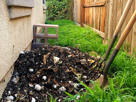 Composting Simply: a Guide to Reducing Your Impact
