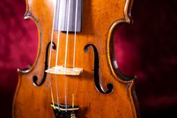 violin1.2.JPG