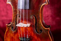 violin3.2.JPG