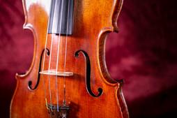 violin4.2.JPG