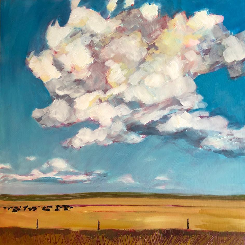 South Dakota Crazy Cloud