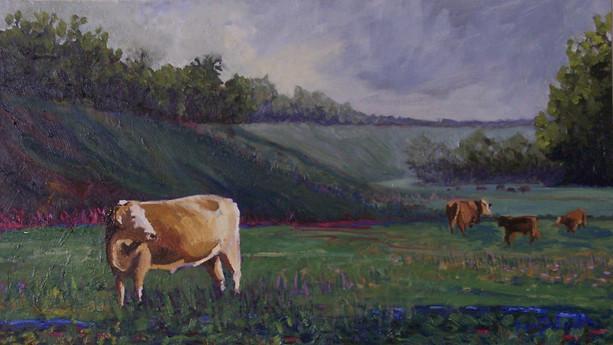 Levy Cows