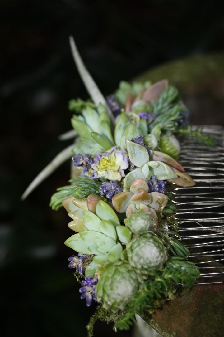 Botanical Haircomb Succulents & Florals