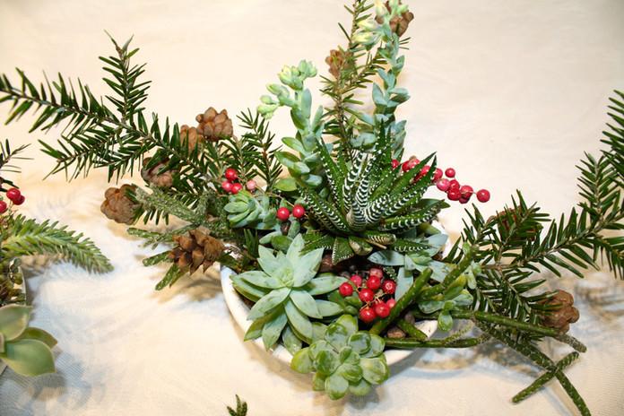 Winter succulent cocktail centerpeices