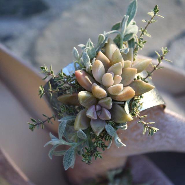 Succulent Cuff