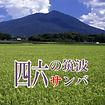 筑波サンバ画像.png