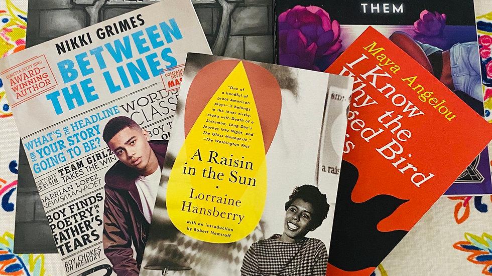 Multicultural Book Box (3 books)