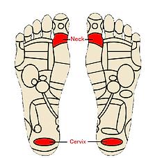 acupressure feet.png