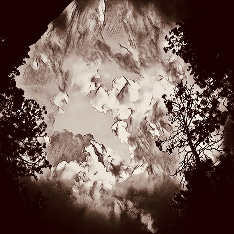 09 Windy Pines.mp4