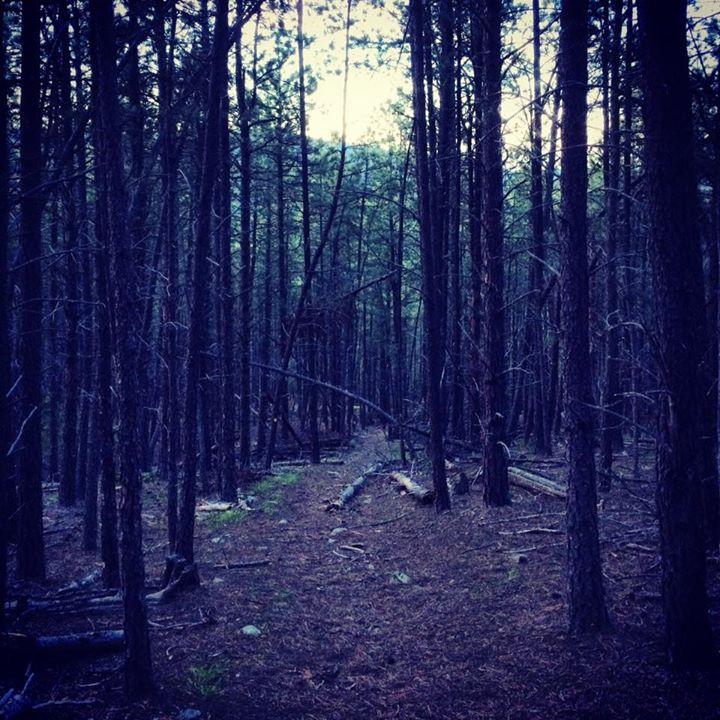 Black Hills Hike