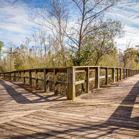 William Brooks Park