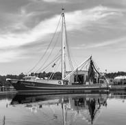 The Shrimp Boats - Bayou La Batre, AL