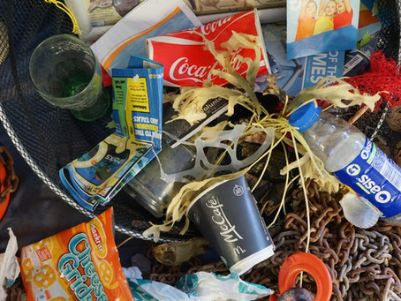 """""""Close the Plastic Tap"""" - an interview with our volunteer Lynn about her work at the IUCN."""