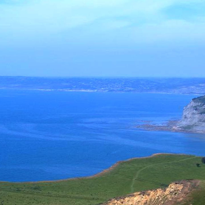 Discover Lyme Bay MPA
