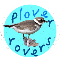 Plover Rover logo.png