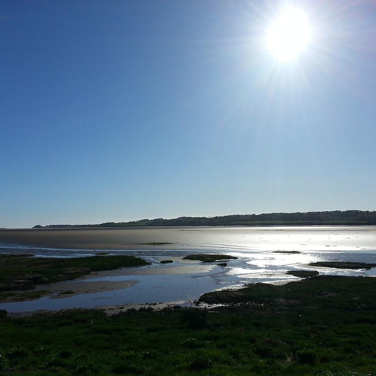 Salt marshes, coastal management & arts-based research