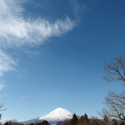 2013 Shizuoka
