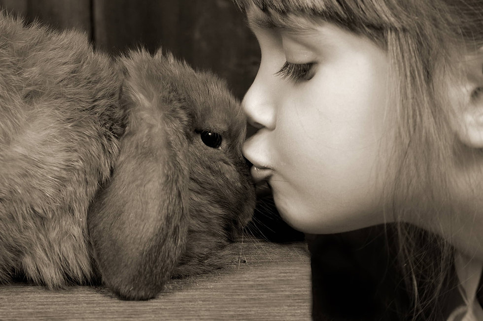 A young girl giving her bunny kisses 5-4