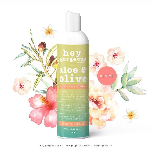 Aloe & Olive Shampoo
