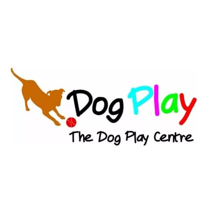 IG Live Chat: Opening The Dog Play Centre
