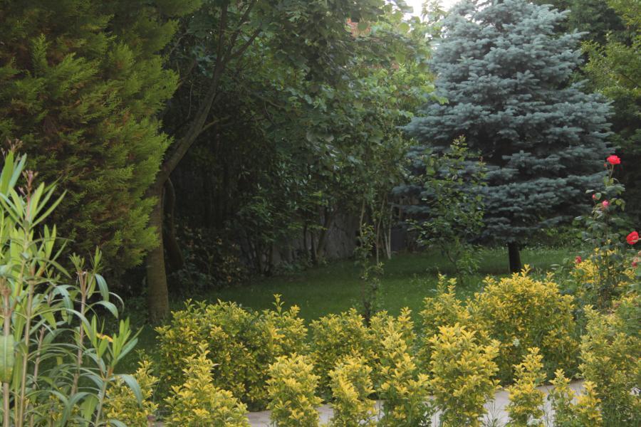 villa-mutlu-28-900x600px