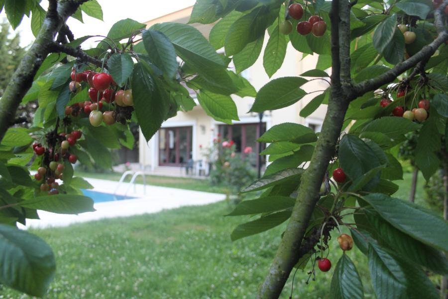villa-mutlu-26-900x600px