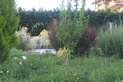 villa-akasya-14-900x600px
